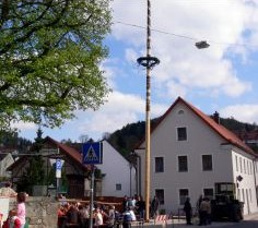 Maibaum in Falkenstein
